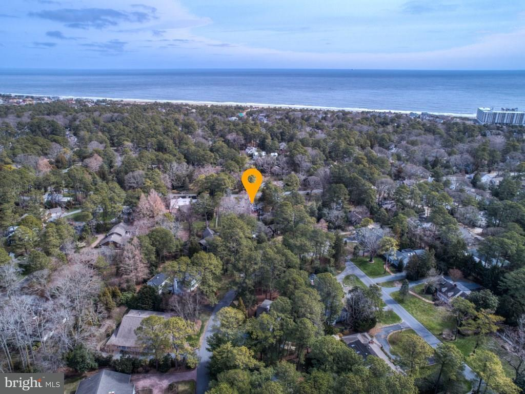 1001569626-300419423055-2018-09-07-11-48-00 Homes for Sale in Henlopen Acres - Rehoboth Beach Real Estate - Bryce Lingo and Shaun Tull REALTORS, Rehoboth Beach, Delaware